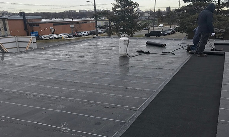 What Should You Do If Your Commercial Roof Leaks?